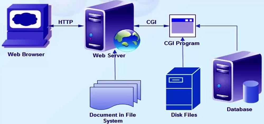 Common Gateway Interface Web Proxy